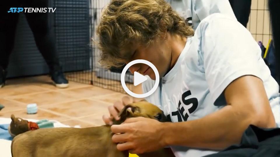 Professional tennis player Alexander Zverev stroking a sausage dog